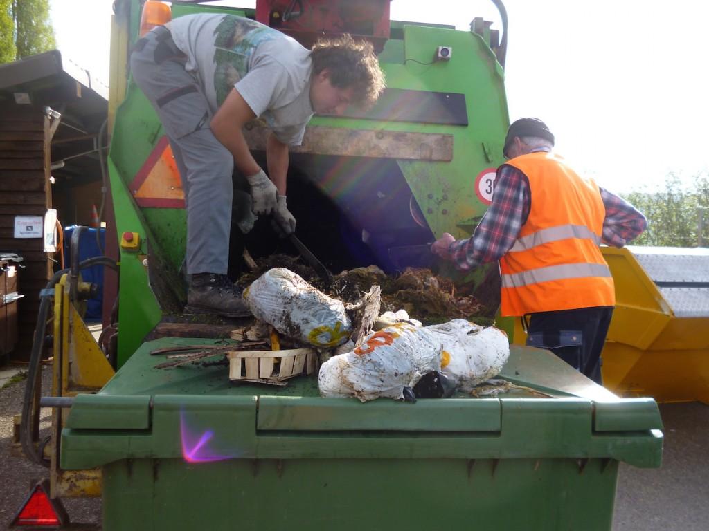 Nicht-kompostierbare Abfälle aussortieren